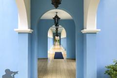 blaue-Akraden
